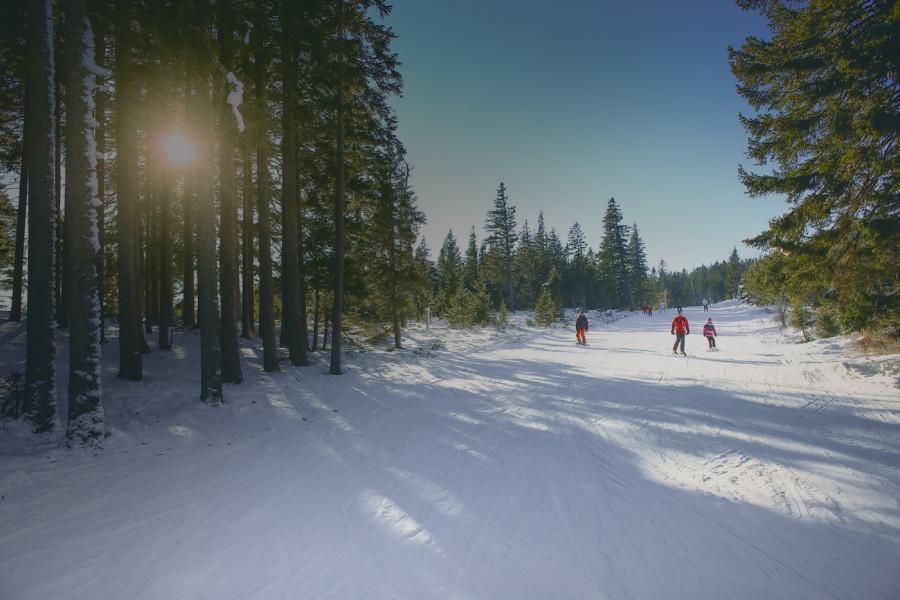 Stara planina ove sezone beleži rekordnu posećenost.